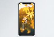 秋意秋季枫叶手机海报配图图片