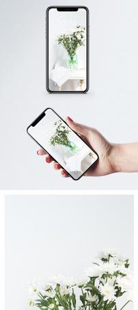 白色野菊花手机壁纸图片