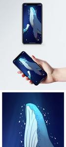 少女与鲸鱼手机壁纸图片