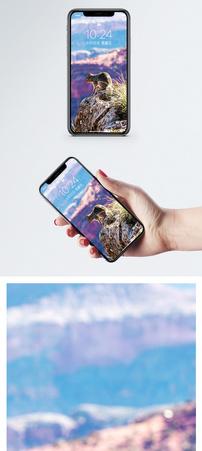 小松鼠手机壁纸图片