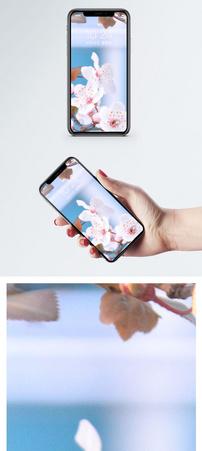花朵手机壁纸图片