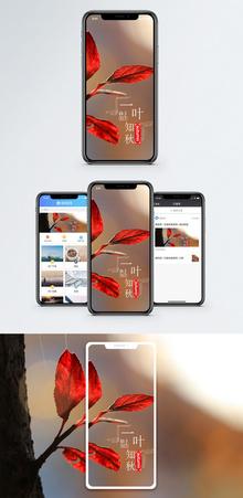 一叶知秋手机海报配图图片