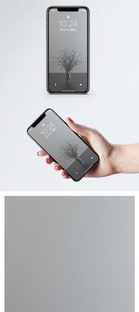 简易干花手机壁纸图片