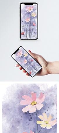 波斯菊手机壁纸图片
