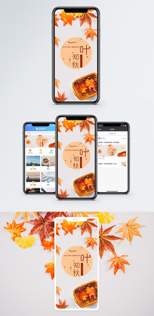 一叶知秋 手机海报配图图片