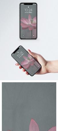 荷花背景手机壁纸图片