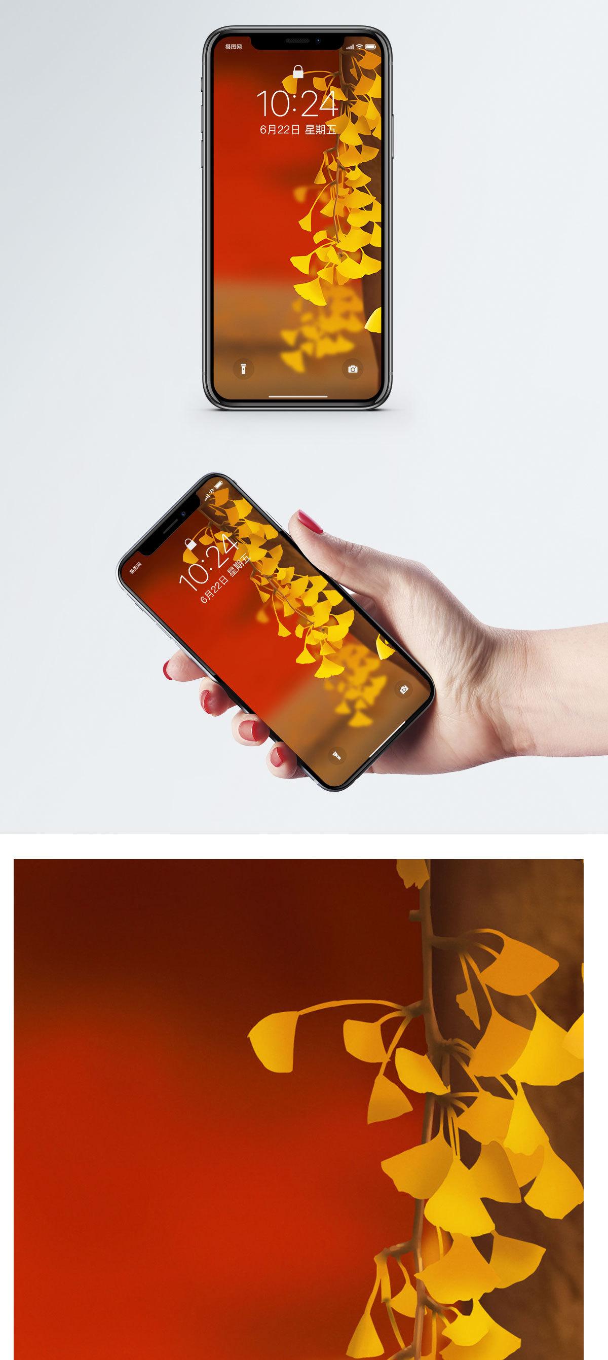 银杏树手机壁纸图片
