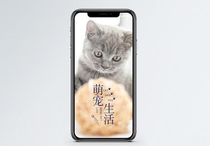 萌宠生活手机海报配图图片