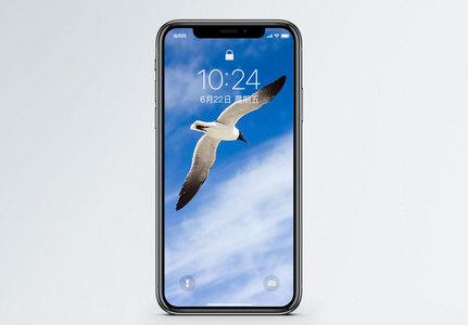 空飞翔的鸟手机壁纸图片
