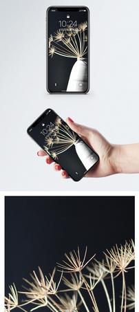 干花手机壁纸图片