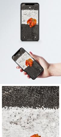 人行道上的落叶手机壁纸图片