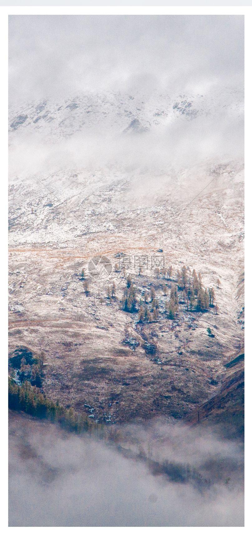 初冬雪景手机壁纸图片