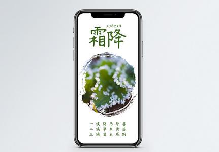 霜降手机海报配图图片