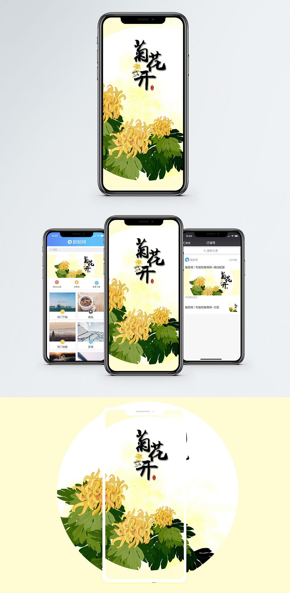 菊花开手机海报配图图片