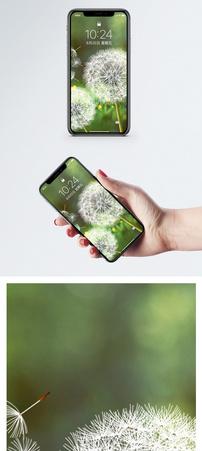 梦幻蒲公英手机壁纸图片