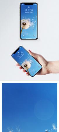 蒲公英手机壁纸图片