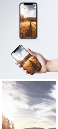 丰收季手机壁纸图片