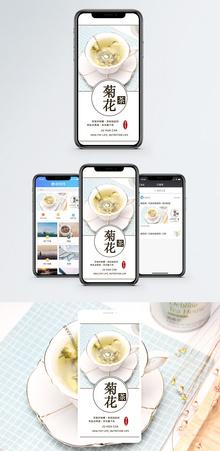 菊花茶手机配图海报图片