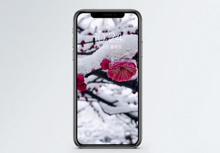 雪景梅花手机壁纸图片