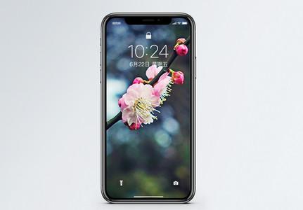 梅花盛开手机壁纸图片