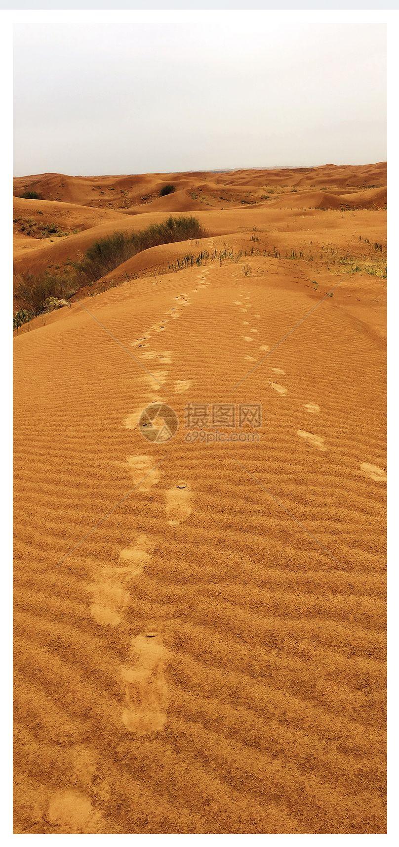库布齐沙漠手机壁纸图片