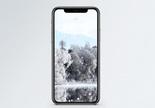冬季雾凇手机壁纸图片