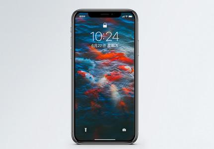 水池里的锦鲤手机壁纸图片