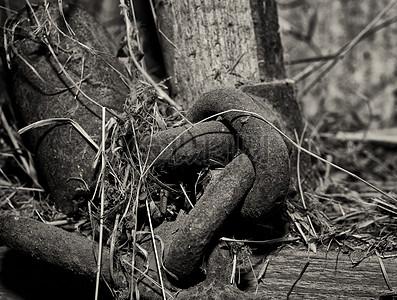 绑在一起的铁链图片