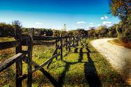 道路旁的木栅栏图片