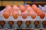 新鲜美味的鸡蛋图片