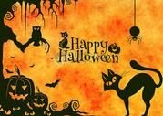 万圣节黑猫猫头鹰南瓜灯海报图片