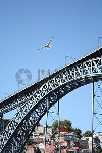 高架桥上的海鸥图片