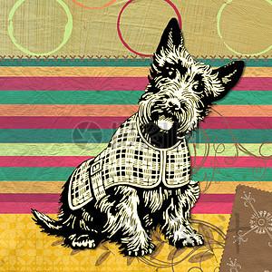 苏格兰 狗 现代 深青色 黄色 拼贴画 带 圆形设计 搞笑 印刷 动物 手