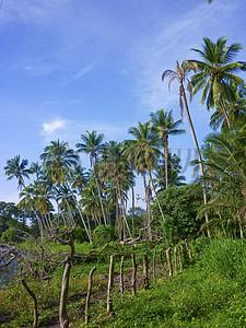 蓝天下的尼加拉瓜图片