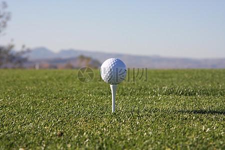 摆好的高尔夫球图片