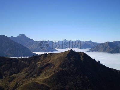 深雾里的阿尔高图片
