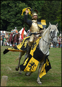 阿姆斯特丹的中世纪骑士比赛图片