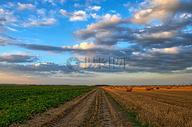 蓝天白云下的田野图片