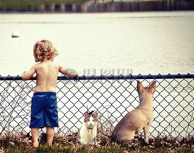 夏天河边玩耍的小男孩和他的猫与狗图片