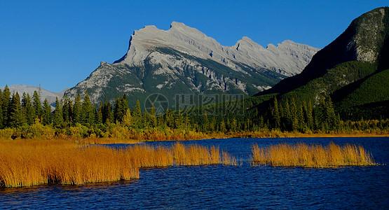 水池中的湖蓝色图片