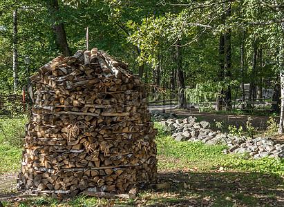 树荫下的木材堆图片