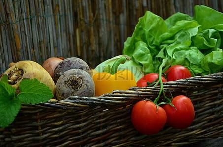 菜篮子蔬菜写生图片