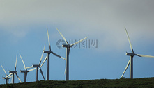 蓝天下的美丽风电场图片