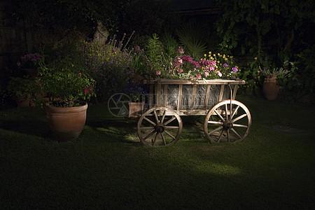 木车上的鲜花图片