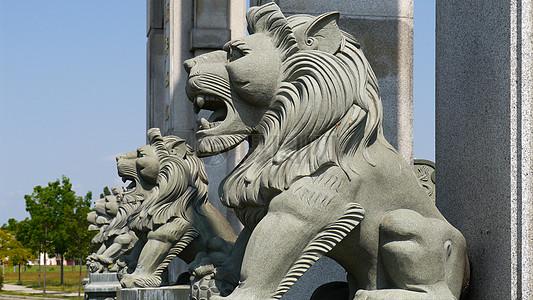 威武的狮子塑像图片