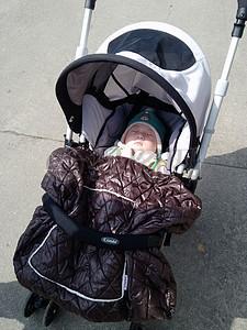 婴儿车里婴儿图片
