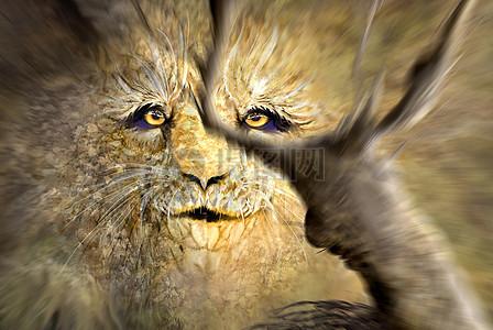 凶猛的狮子头图片