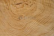 实木纹理切面贴图图片