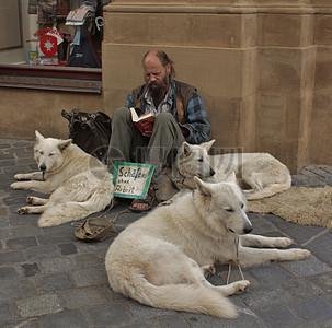 男子和狗狗照片图片