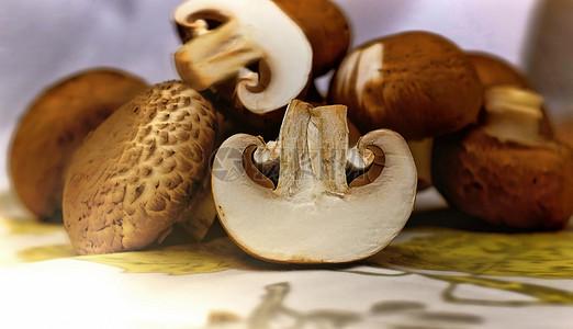 切开的蘑菇特写图片